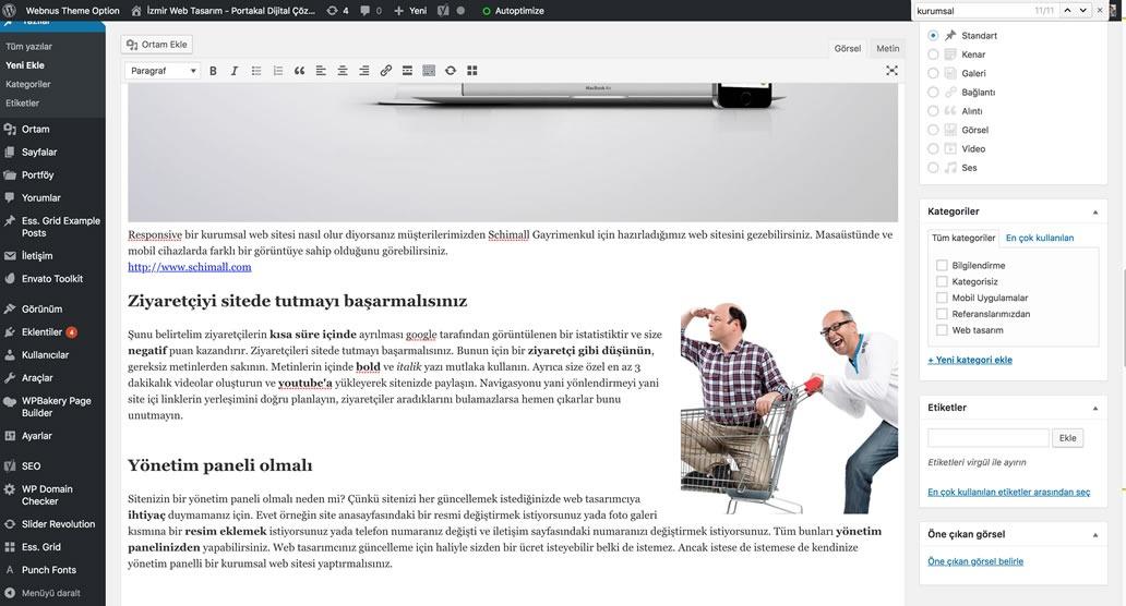 wordpress yönetim paneli