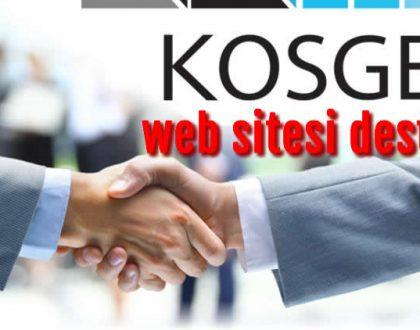 kosgeb web sitesi desteği